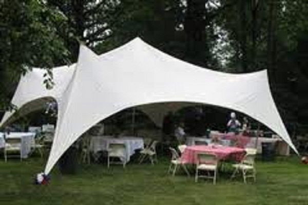 Where to find CANOPY 20 X30  CAPRI in Jackson