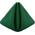 Where to rent HUNTER GREEN POLYESTER NAPKIN in Jackson MI