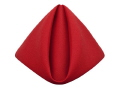 Where to rent RED POLYESTER NAPKIN in Jackson MI