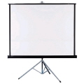 Where to rent PROJECTOR SCREEN 39  X 39 in Jackson MI
