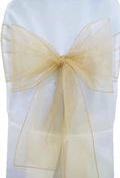 Where to rent CHAIR COVER SASH TAN ORGANZA in Jackson MI