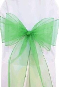 Where to rent CHAIR COVER SASH GREEN ORGANZIA in Jackson MI