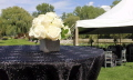 Where to rent 28  SQUARE BLACK SPARKLE ORGANZA OVERLAY in Jackson MI