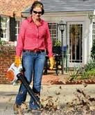 Where to find LEAF BLOWER HAND 2 CYCLE in Jackson